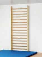 Sprossenwand - Einzelfeld 240 x 100